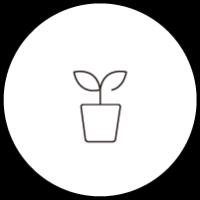 観葉植物・フェイクグリーン